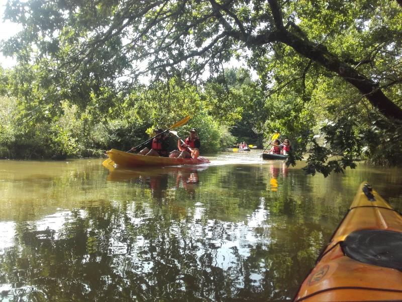 Balade en kayak sur le Canal de Haute-Perche