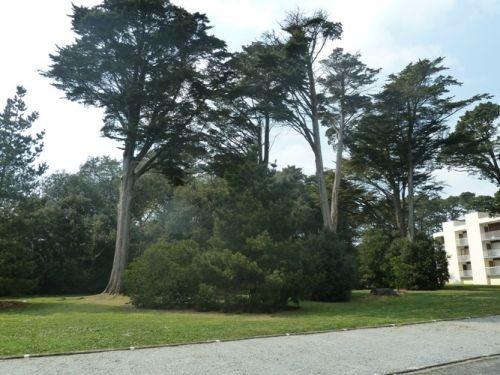 Parc de la résidence - HORT2
