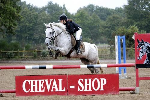 stage équitation, poney, cheval, centre équestre
